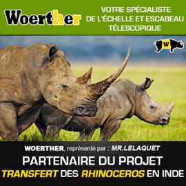 Projet tranfert rhinocéros