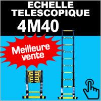 Echelle télescopique 4,40 mètres Woerther